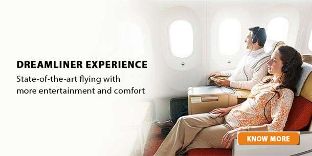 Dreamliner Experiance