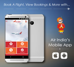 cheapest airline tickets india domestic